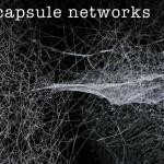Yapay Zekada Büyük Yenilik: Kapsül Ağları (Capsule Networks)